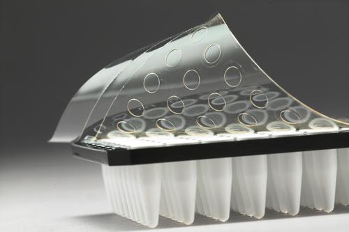 PCR fóliák