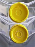 Tissue culture flask 75 cm / filter screw cap, 100 pieces