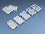 Sejttenyésztő plate, 96-lyukú, 6 db/csg, 108 csg