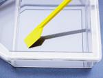 Sejtkaparó spatula L = 20 cm, 150 db